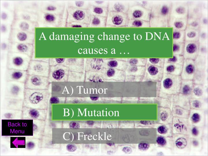 A damaging change to DNA causes a …