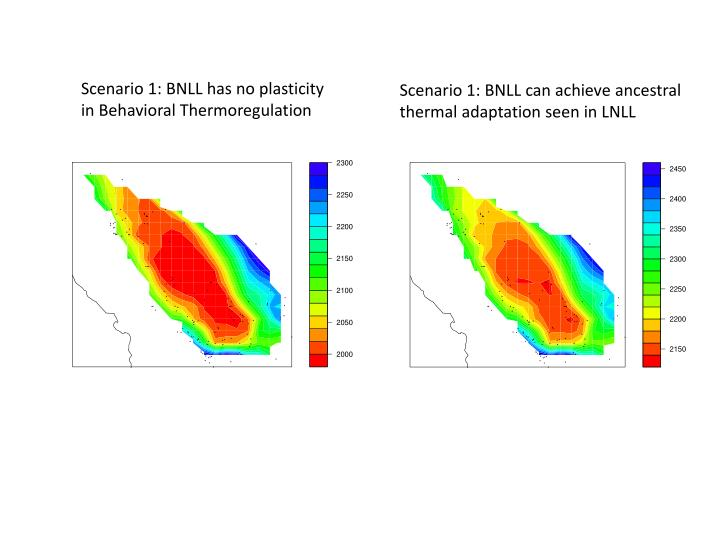 Scenario 1: BNLL has no plasticity in Behavioral Thermoregulation