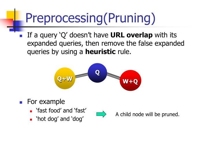 Preprocessing(Pruning