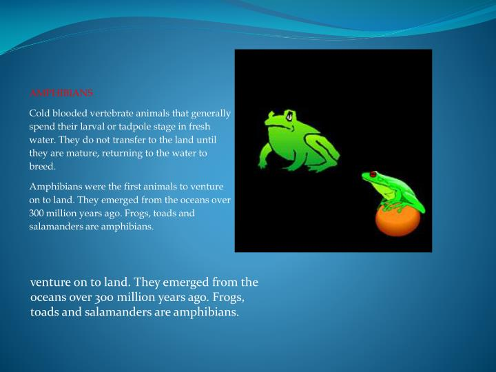 venture on to land. They emerged from the oceans over 300 million years ago.