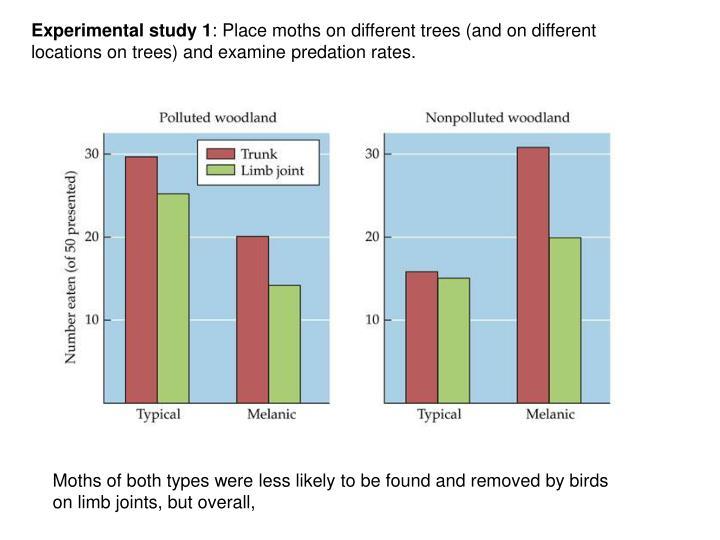 Experimental study 1