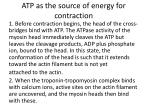 atp as the source of energy for contraction