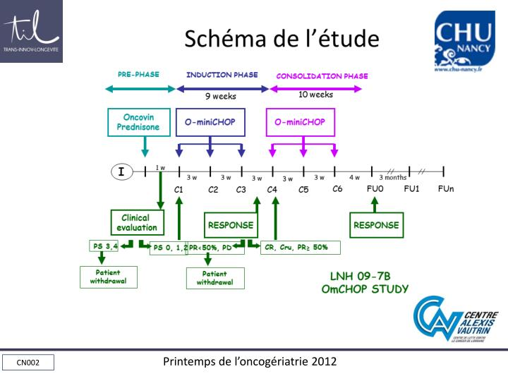 Schéma de l'étude