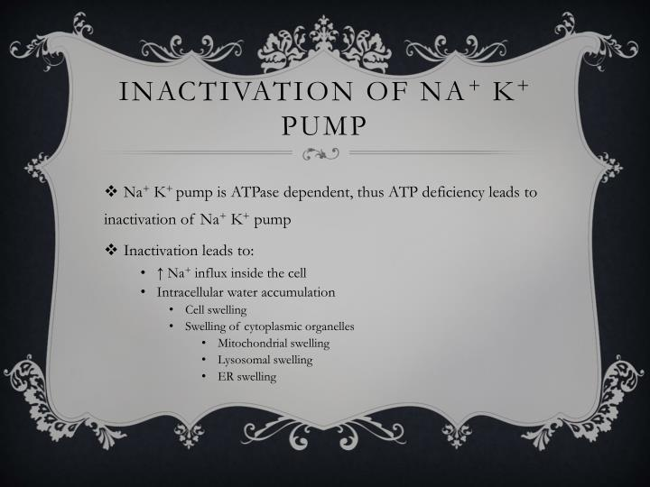 Inactivation of Na