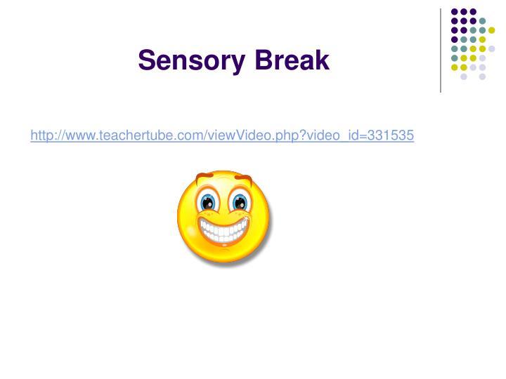 Sensory Break