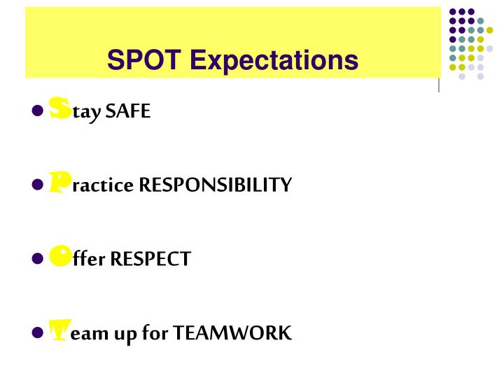 SPOT Expectations