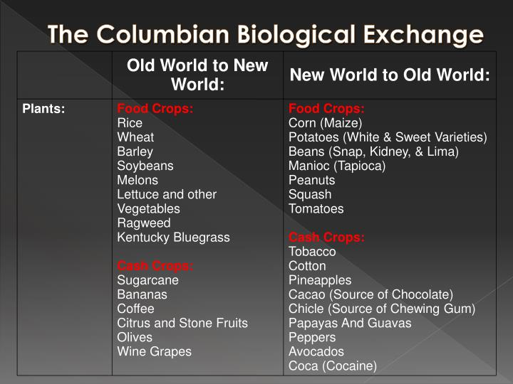 Old World to New World: