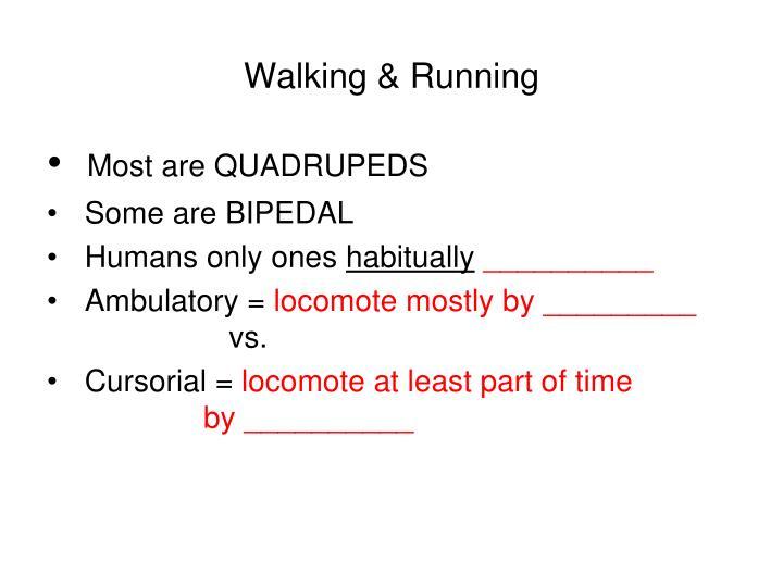 Walking & Running