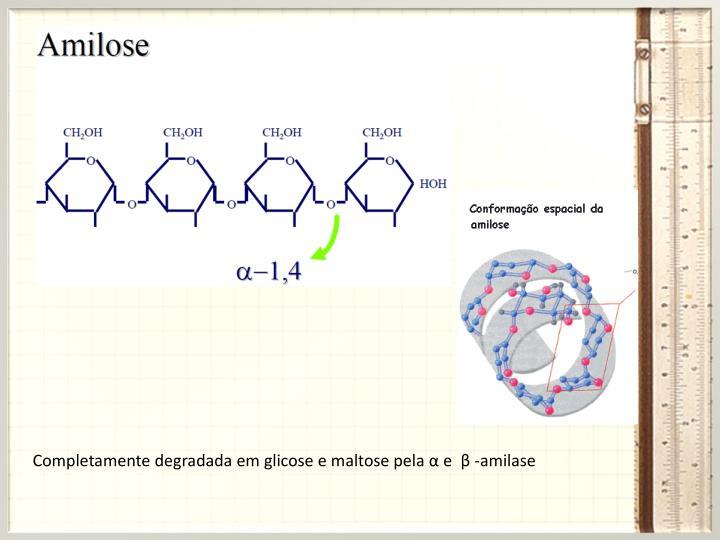 Completamente degradada em glicose e maltose pela α e
