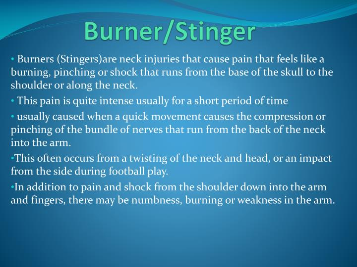 Burner/Stinger