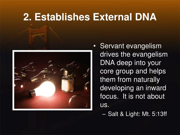 2. Establishes External DNA