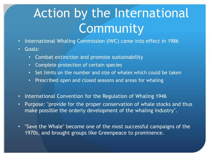 Action by the International Community
