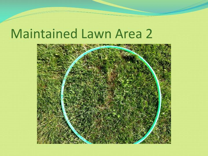 Maintained Lawn Area 2