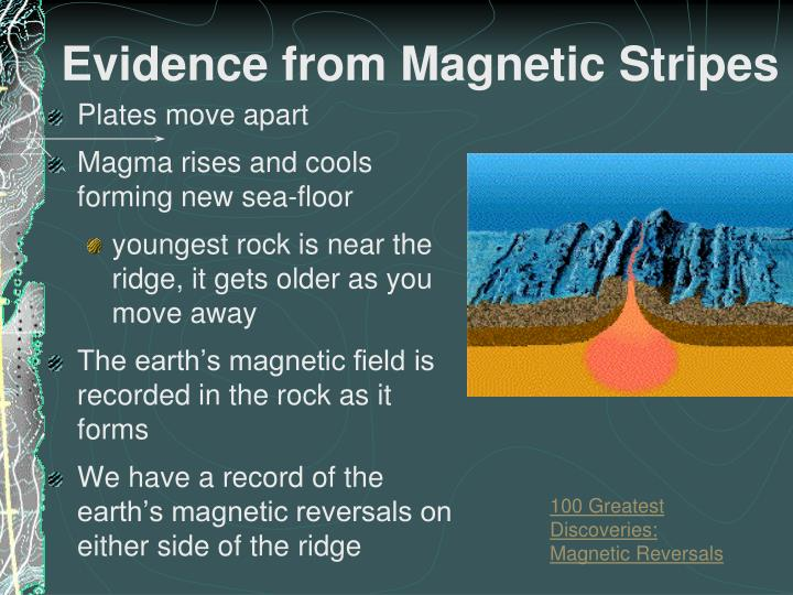 Evidence from Magnetic Stripes
