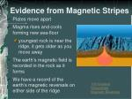 evidence from magnetic stripes1