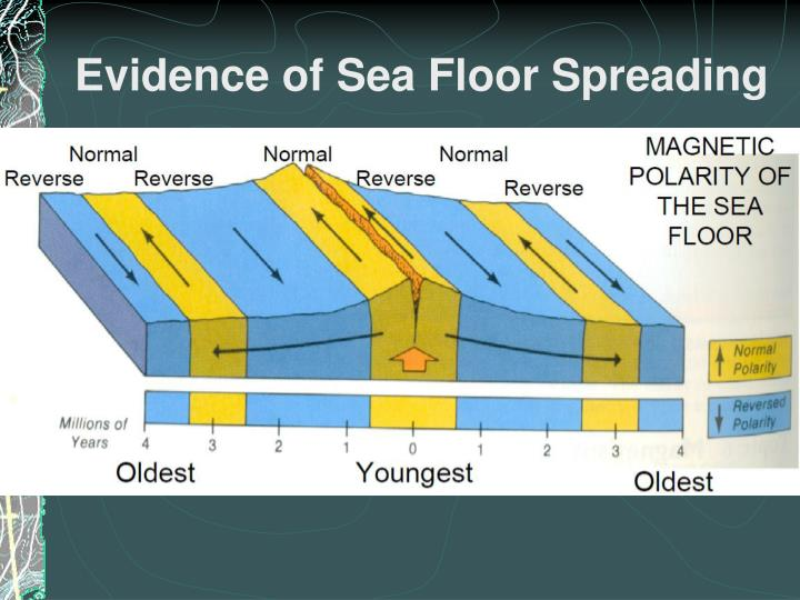 Evidence of Sea Floor Spreading