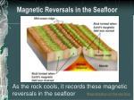 magnetic reversals in the seafloor