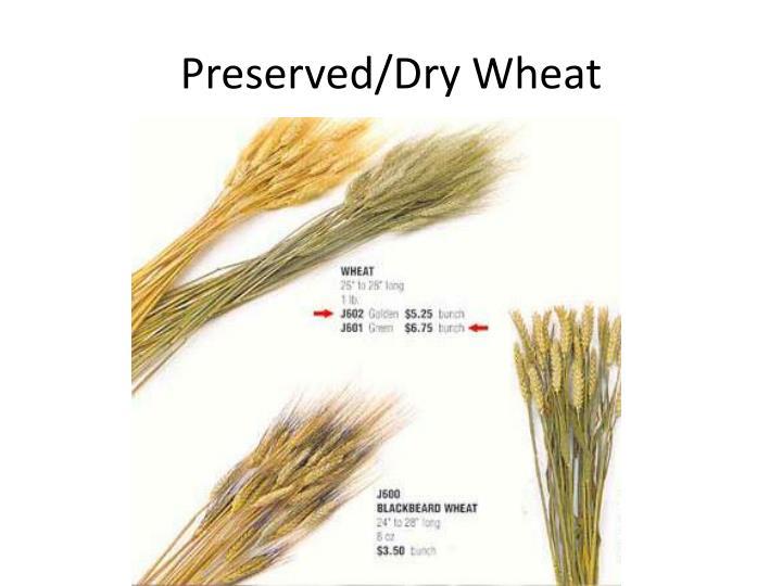 Preserved/Dry