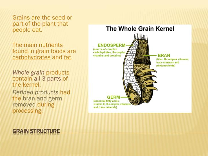 Grains are the seed or part of the plant that people eat.