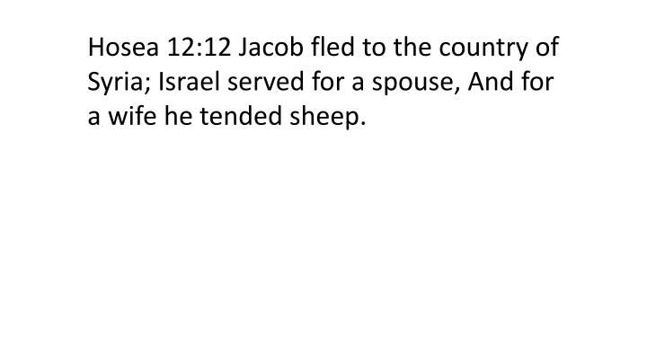 Hosea 12:12 Jacob fled to the country of Syria; Israel served for a spouse, And for a wife he tended sheep.