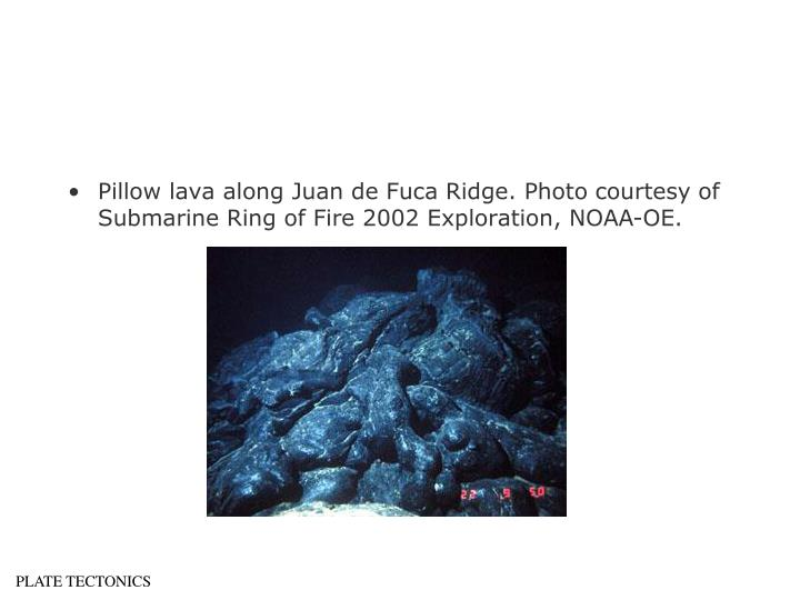 Pillow lava along Juan de Fuca Ridge. Photo courtesy of Submarine Ring of Fire 2002 Exploration, NOAA-OE.