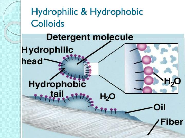 Hydrophilic & Hydrophobic Colloids