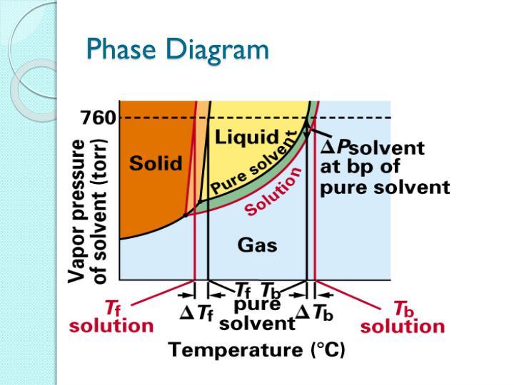 Phase Diagram