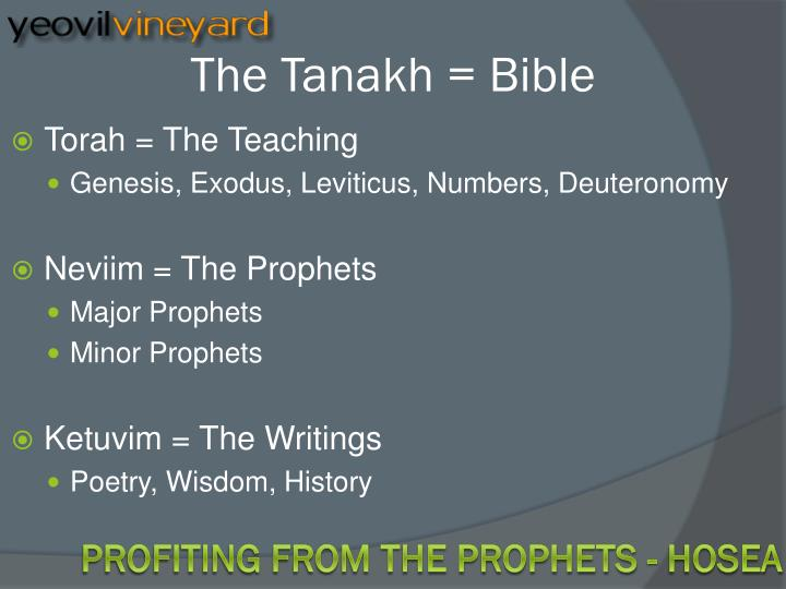 Minor Prophets Bible Commentaries and Study Guide
