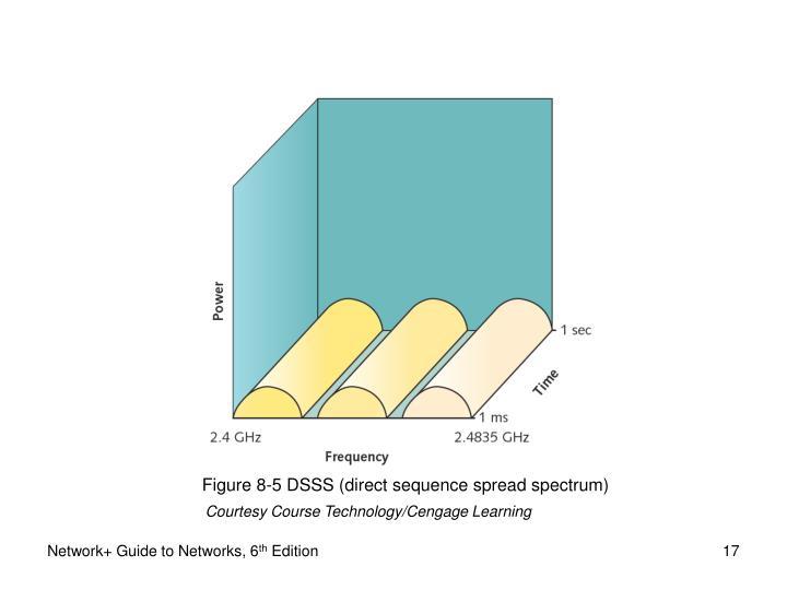 Figure 8-5 DSSS (direct sequence spread spectrum)