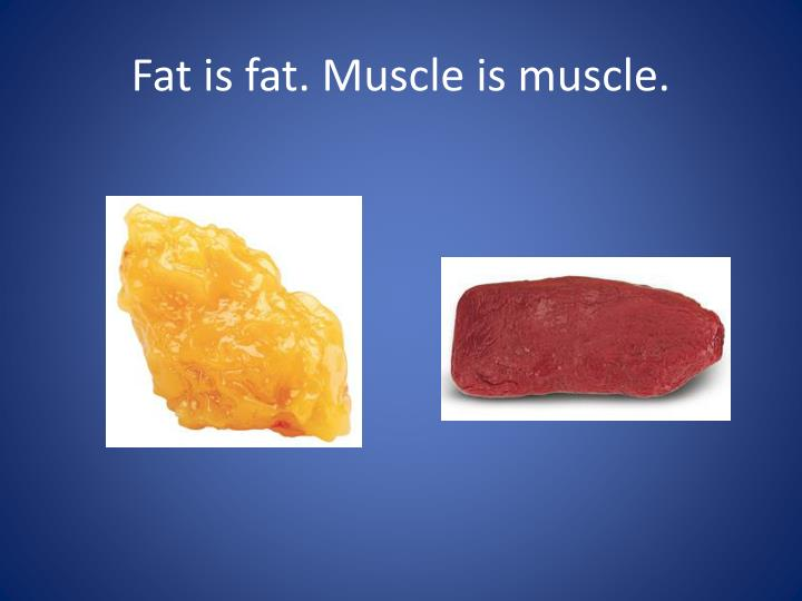Fat is fat. Muscle is muscle.