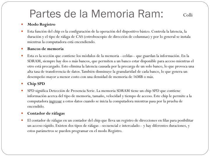 Partes de la Memoria