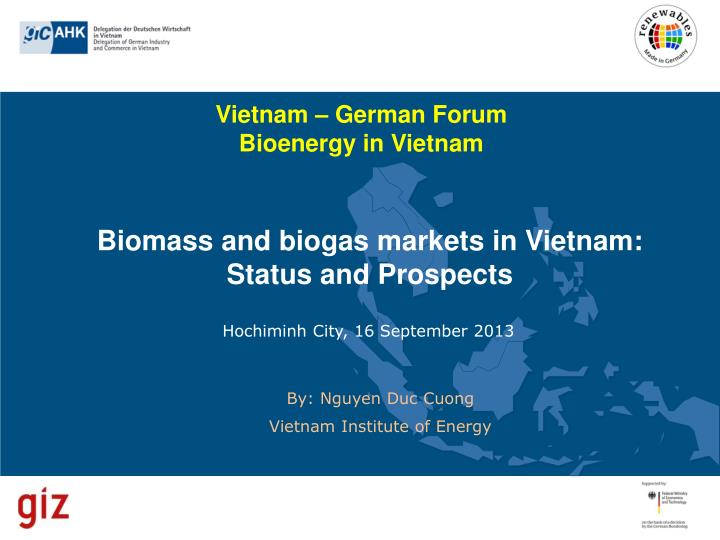 Biomass and biogas markets in vietnam status and prospects
