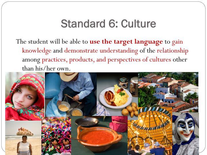 Standard 6: Culture