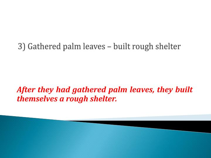 3) Gathered palm leaves – built rough shelter
