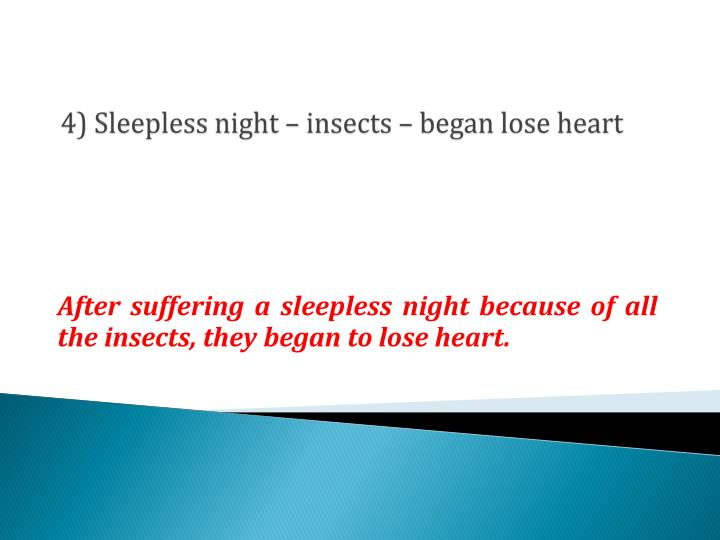 4) Sleepless night – insects – began lose heart