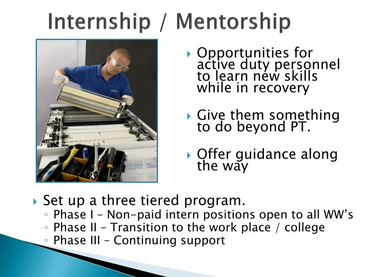 Internship / Mentorship