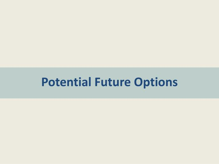 Potential Future Options