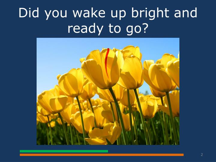 Did you wake up bright and ready to go?