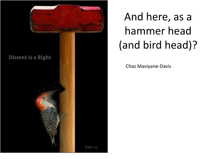 And here, as a hammer head (and bird head)?