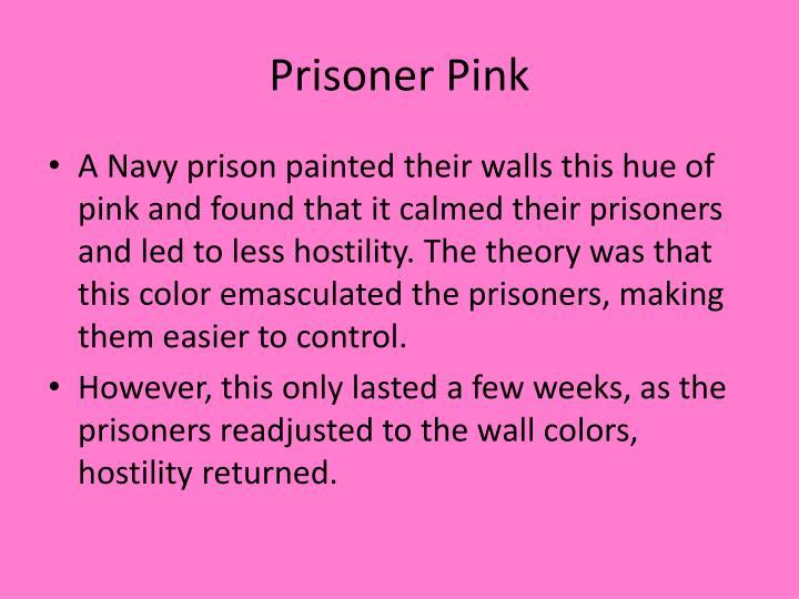 Prisoner Pink