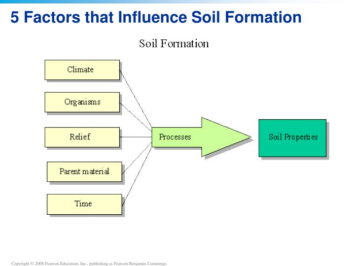 Soil formation factors driverlayer search engine for Soil factors