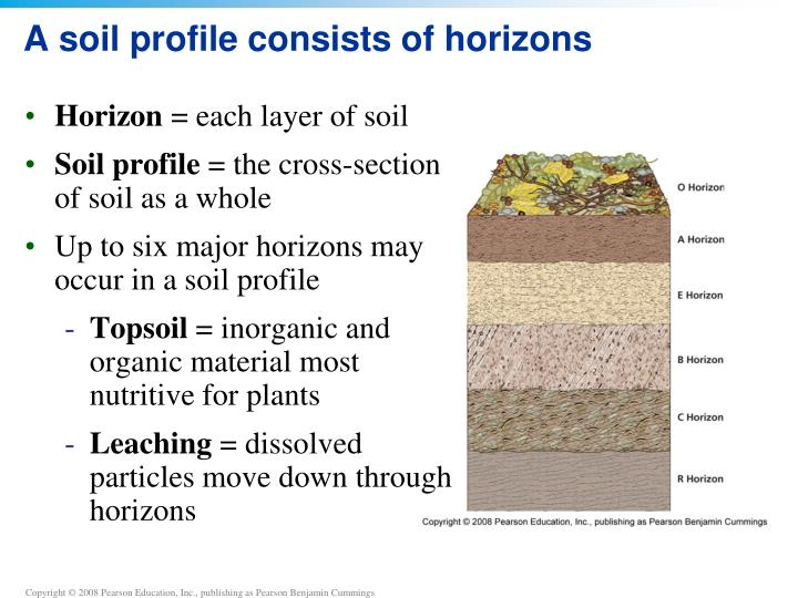 ppt chapter 9 soil powerpoint presentation id 2212603