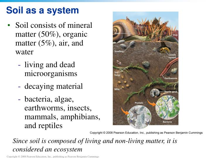 Ppt chapter 9 soil powerpoint presentation id 2212603 for Soil as a system