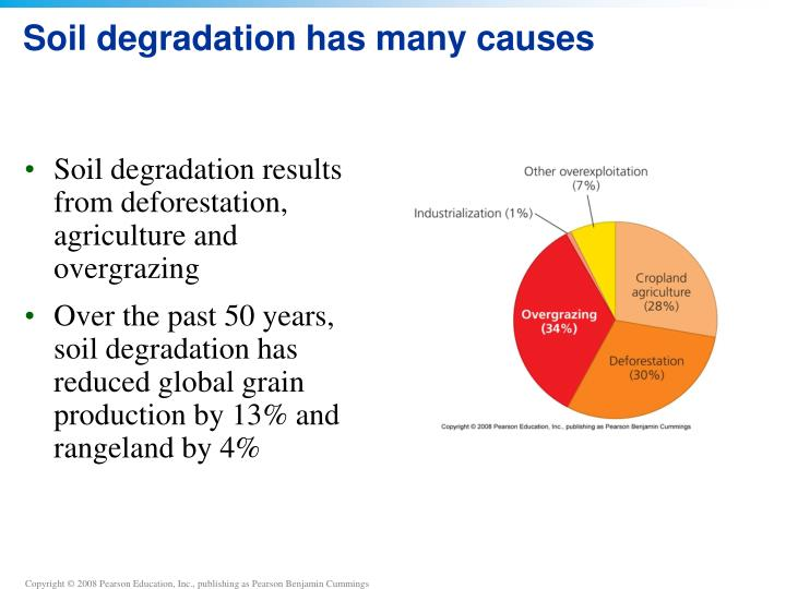 causes of soil degradation pdf