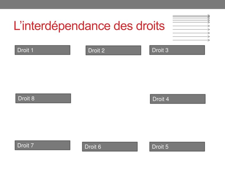 L'interdépendance des droits