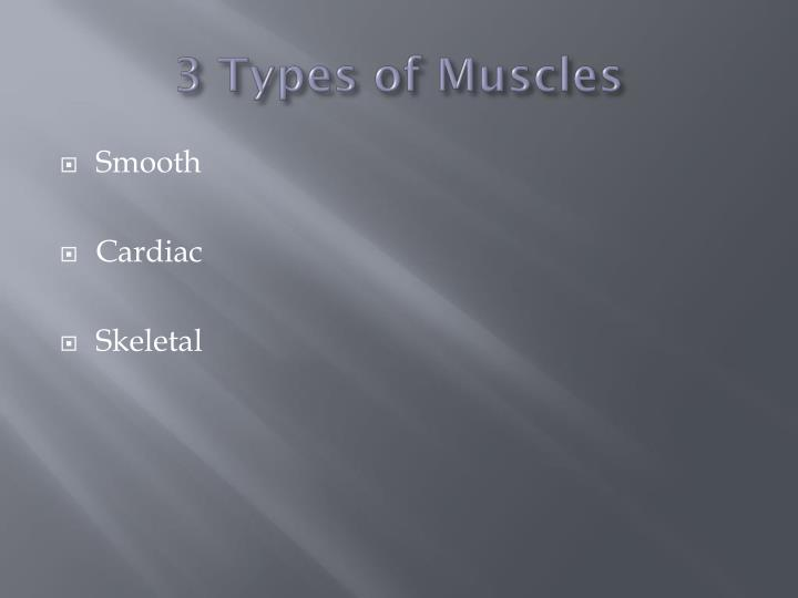 3 Types of Muscles