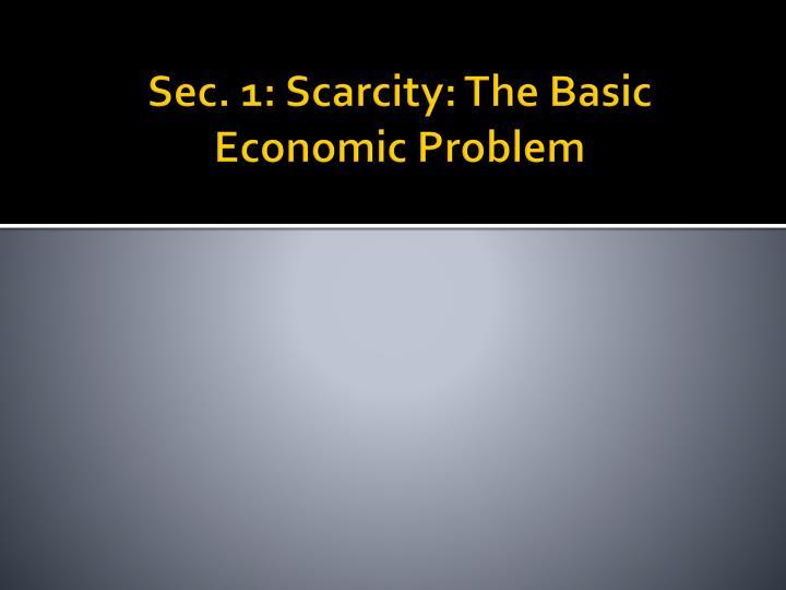 Sec. 1: Scarcity: The Basic Economic Problem