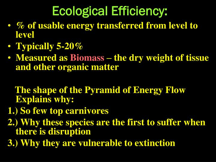 Ecological Efficiency: