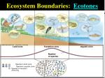 ecosystem boundaries ecotones