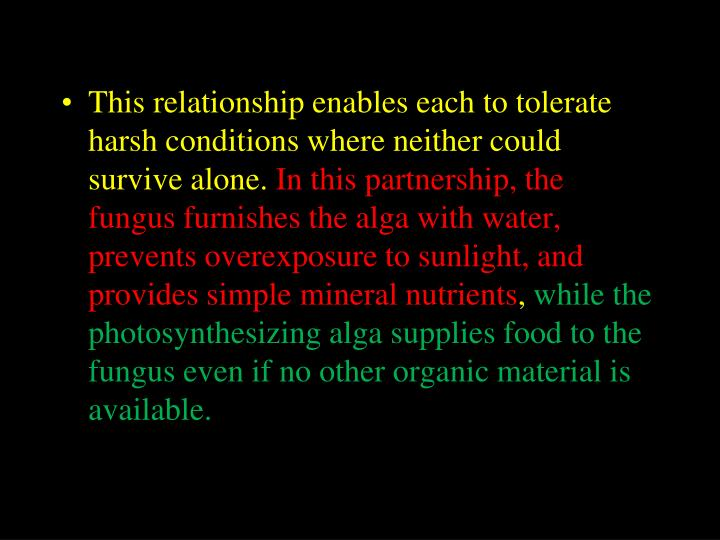 This relationship enables each to tolerate harsh conditions where neither could survive alone.